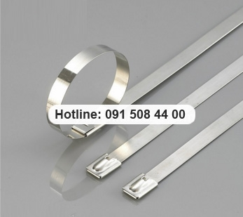 Cable Tie Stainless Steel Wall Ties